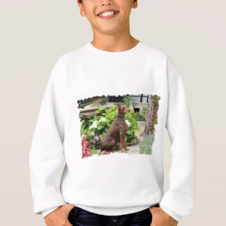 Sweatshirt Dobermann - dans le jardin d'église