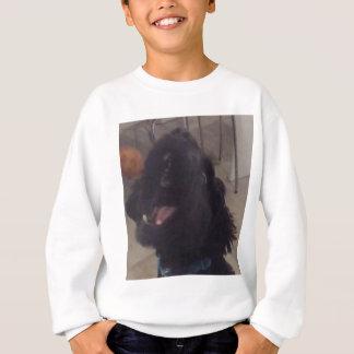 Sweatshirt Doges sautants
