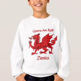 Sweatshirt Dragon de Davies Gallois