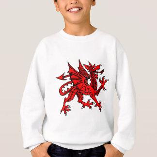 Sweatshirt Dragon de Gallois