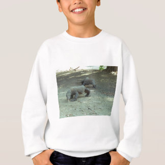 Sweatshirt Dragons de Komodo