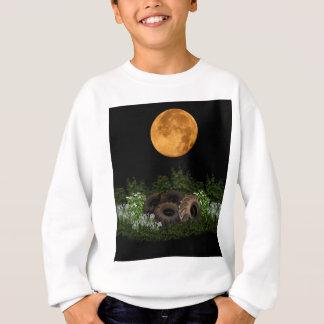 Sweatshirt Écologie