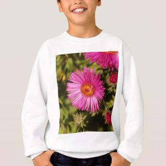 Sweatshirt Fleur d'un aster de Nouvelle Angleterre