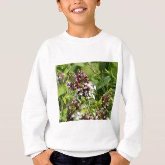 Sweatshirt Fleur sauvage indien de pomme de terre