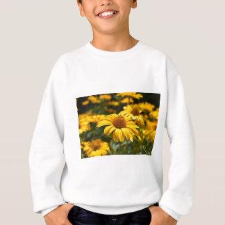 Sweatshirt flowers-2824808