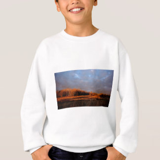 Sweatshirt Foyer de chute sur l'île de St Joseph