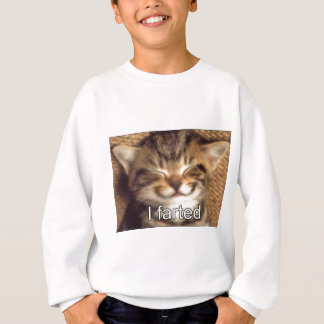 Sweatshirt Fun cat
