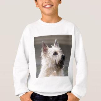 Sweatshirt Garçon beau