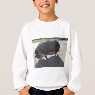 Sweatshirt Grand porc