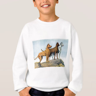 Sweatshirt Grands Danois