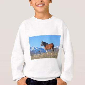 Sweatshirt Herbe et montagnes de cheval
