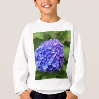 Sweatshirt Hortensia français (macrophylla d'hortensia)