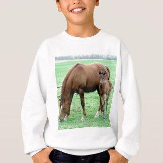 Sweatshirt Jument de baie et son colt