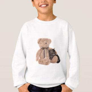 Sweatshirt kitten in the arms of a teddy bear