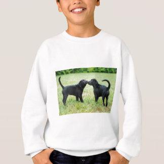 Sweatshirt Labrador retriever noir