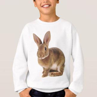 Sweatshirt Lapin mignon de Kawaii