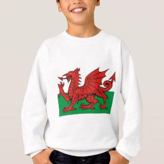 Sweatshirt Le drapeau de Gallois, le portent avec fierté