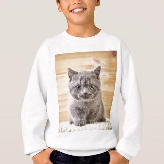 Sweatshirt Miscellaneous - Lovely Kittens Eight