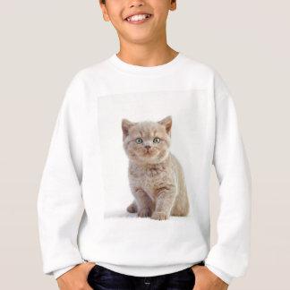 Sweatshirt Miscellaneous - Lovely Kittens Nine
