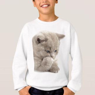 Sweatshirt Miscellaneous - Lovely Kittens Six