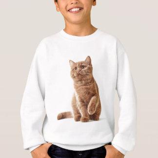 Sweatshirt Miscellaneous - Lovely Kittens Three