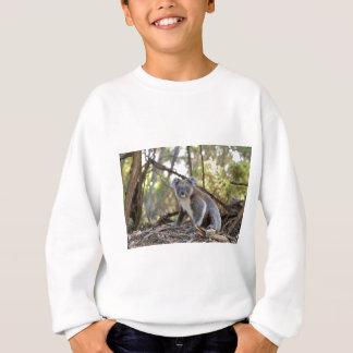 Sweatshirt Ours de koala gris et blanc