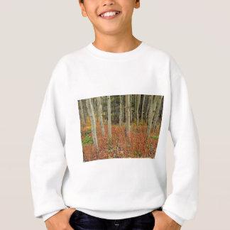 Sweatshirt Plancher coloré de forêt d'Aspen
