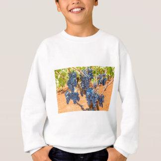 Sweatshirt Plante de raisin avec les groupes grapes.JPG bleu