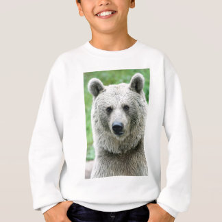 Sweatshirt Portrait d'un ours