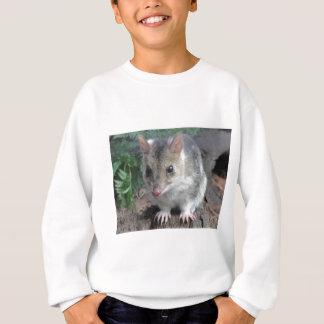 Sweatshirt Quoll de la Tasmanie