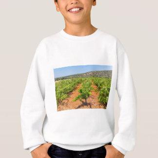 Sweatshirt Rangées des plantes de raisin avec la montagne