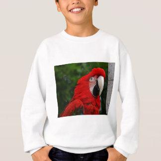 Sweatshirt Red Macaw