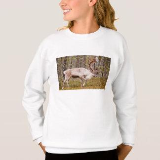 Sweatshirt Renne marchant dans la forêt
