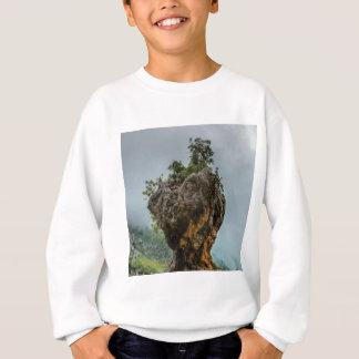 Sweatshirt roche équilibrée érodée