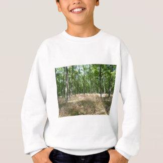 Sweatshirt sous bois  et tapis de graminées à l'automne