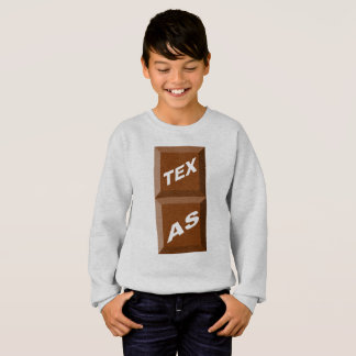 SWEATSHIRT SWEAT-SHIRT  HANES  CENDRE  TEXAS   CHOCOLAT