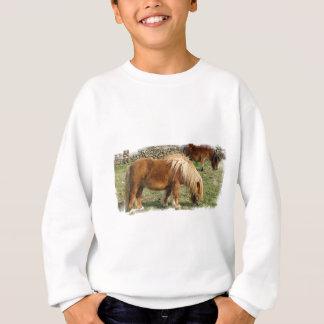 Sweatshirt Sweatsihrt hirsute des enfants de poney de
