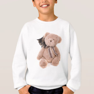 Sweatshirt tabby kittens playing with a teddy bear