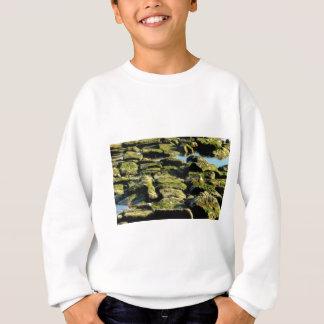 Sweatshirt texture verte de bloc