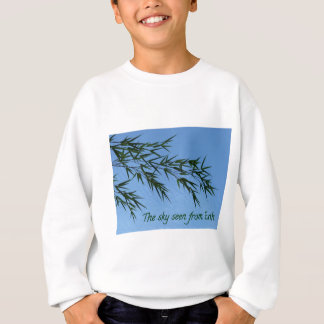 Sweatshirt the sky seen from earth