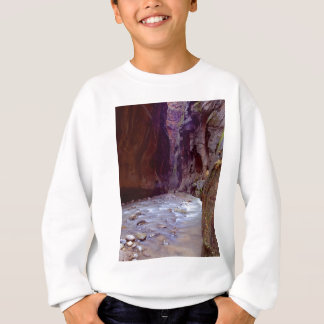 Sweatshirt Zion rétrécit le randonnée par la rivière dans le