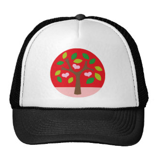sweettree2 casquette