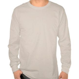 Symbole de zen de bleu de ciel t-shirts