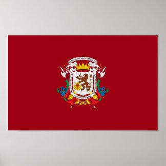 symbole du Venezuela de drapeau de ville de Poster