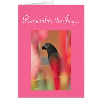 Sympathie d'animal familier de perroquet de gris a carte