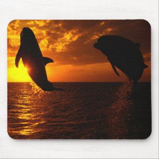 Symphonie de dauphins au coucher du soleil tapis de souris