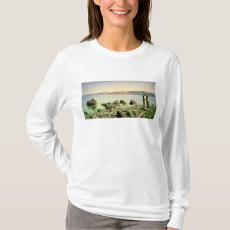 T-shirt À la mer de la Galilée, 1888