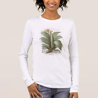 T-shirt À Manches Longues Aloès américain : Aloès americana, du 'Hortus Ey