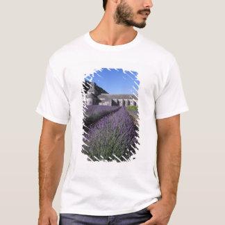 T-shirt Abbaye de Senanque, Gordes, Vaucluse, Provence,