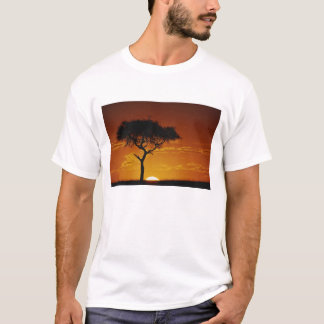 T-shirt Acacia d'épine de parapluie, tortilis d'acacia,